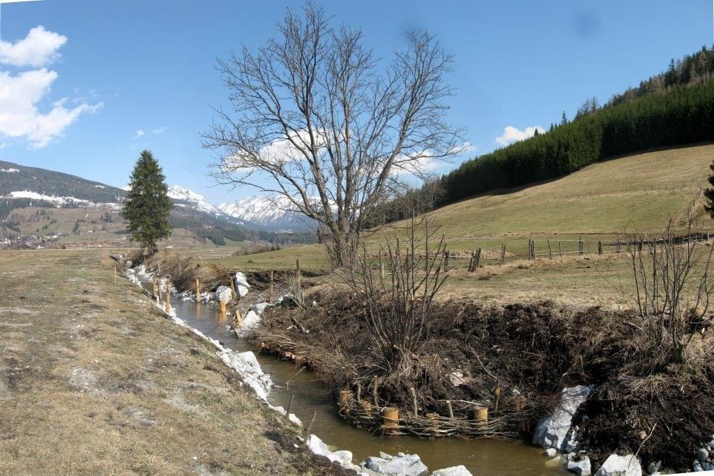 Naturschutzprojekte an Salzburgs Bächen und Flüssen