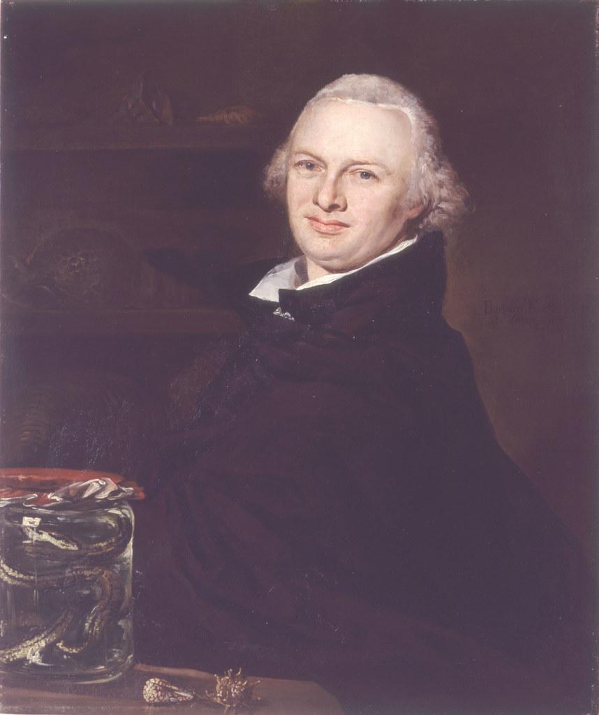 Karl von Moll