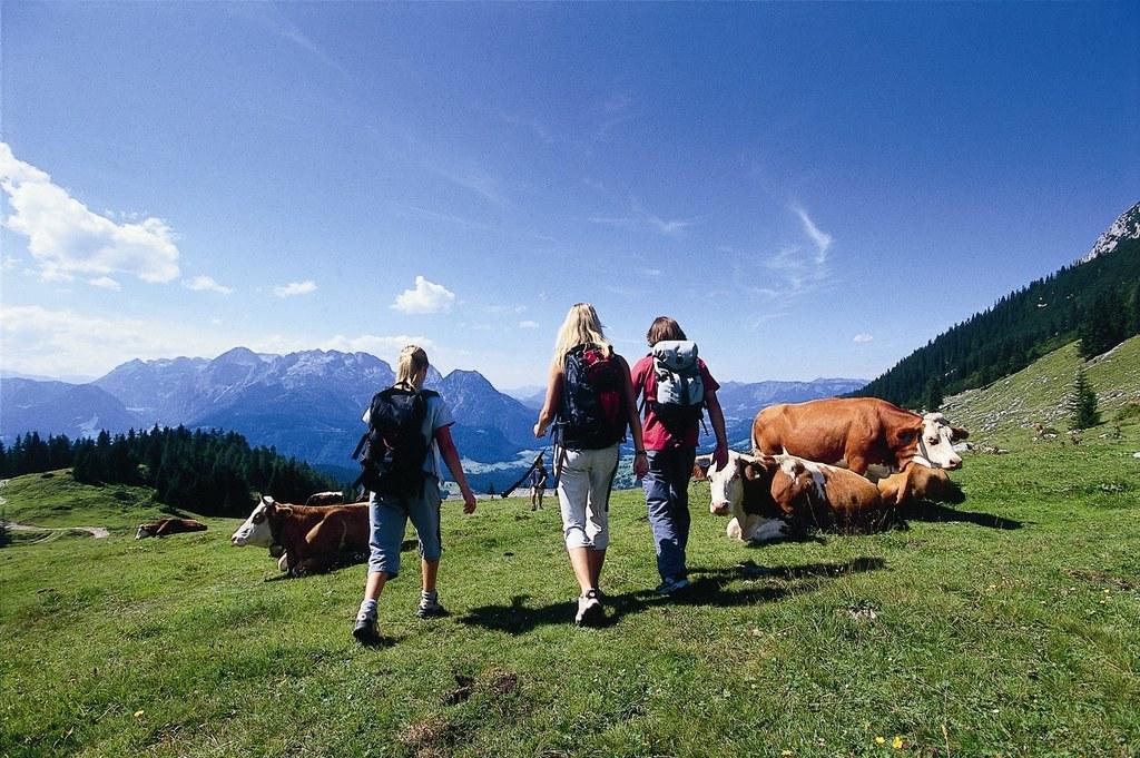 Tourismus im Salzburger Land