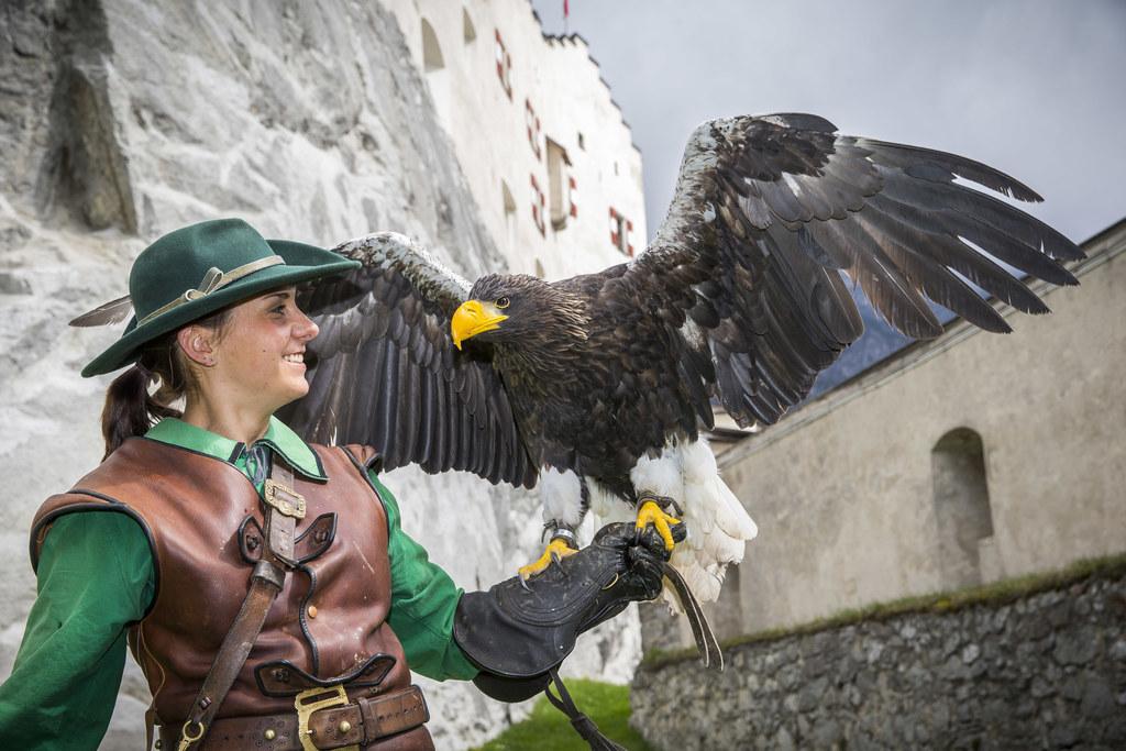 Falknerei-Sonderprogramm auf Burg Hohenwerfen