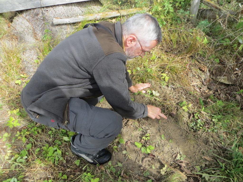 Dr. Georg Rauer, Bärenanwalt, bei der Spurensuche im Göriachtal