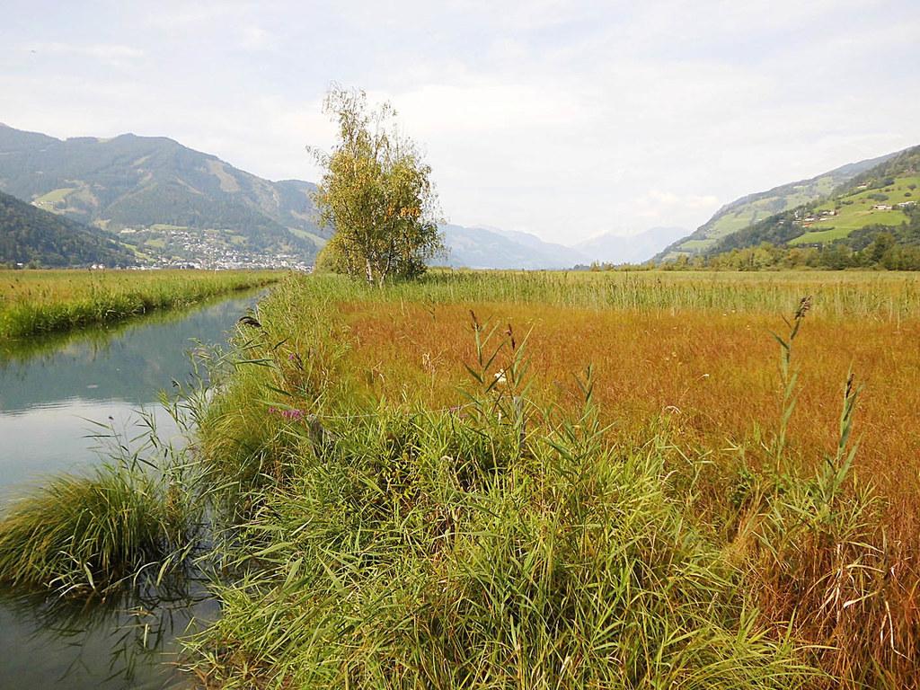 Naturschutzgebiet Zeller See