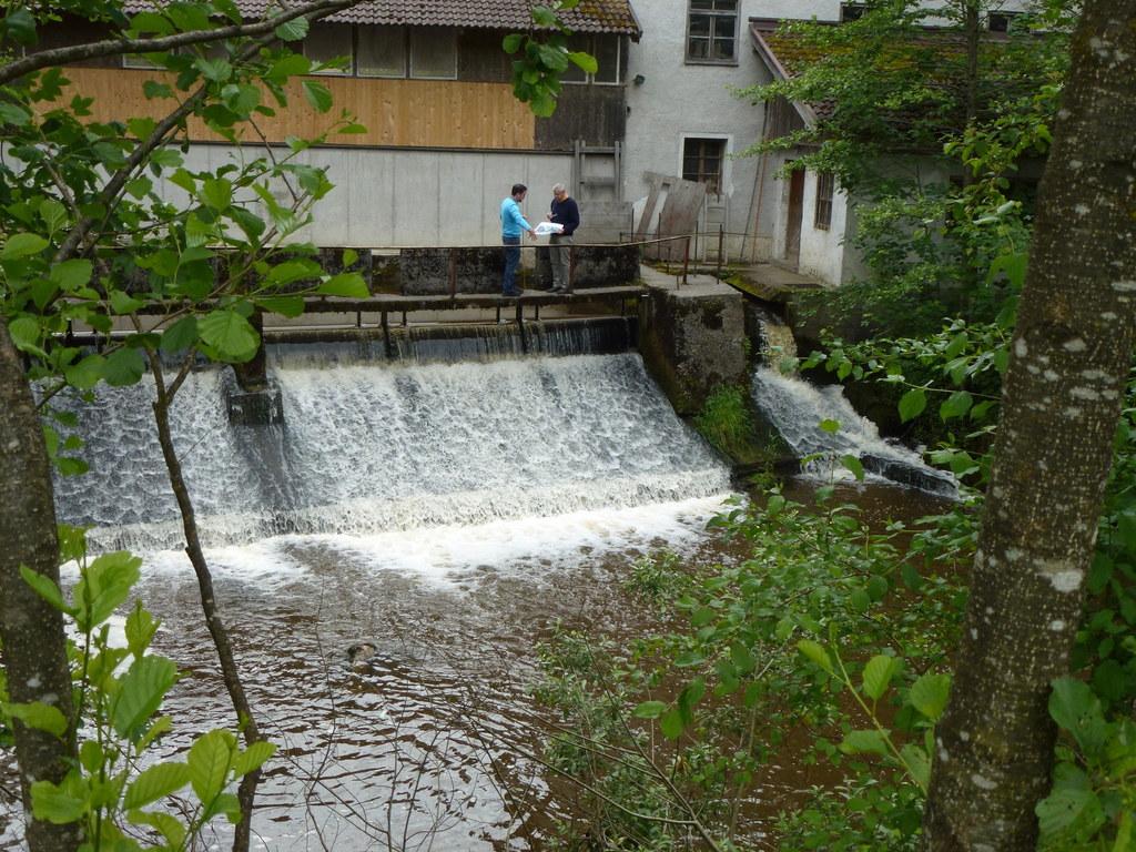 Die Oichten ist ein Vorzeigeprojekt für erfolgreiche Renaturierung bei Fließgewä..