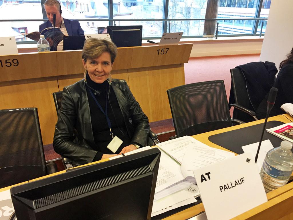 Landtagspräsidentin Brigitta Pallauf bei der Sitzung der Fachkommission für Sozi..
