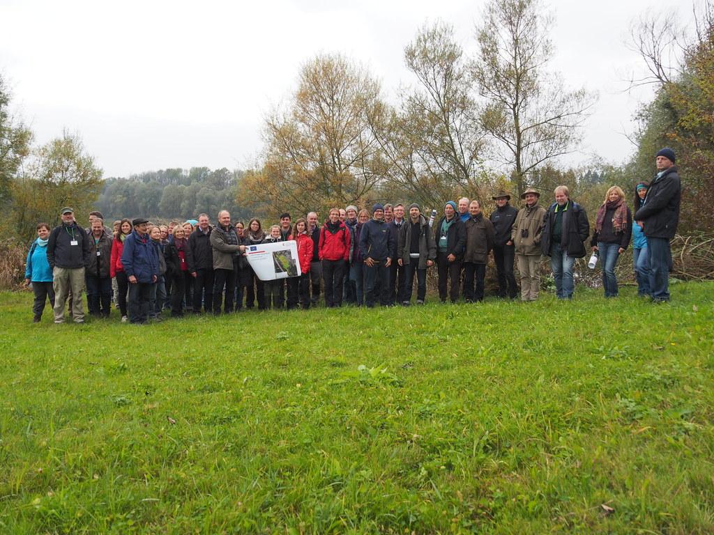 Naturschutzexperten aus Bayern lernten LIFE-Projekt Salzachauen kennen