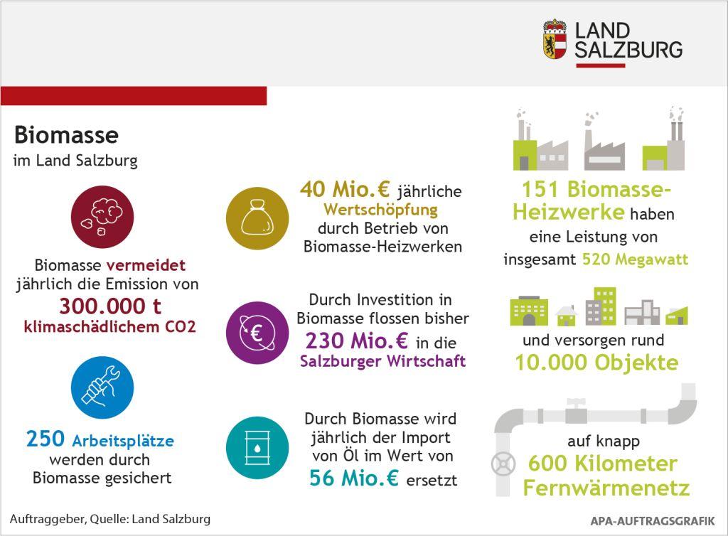 Infografik: Biomasse