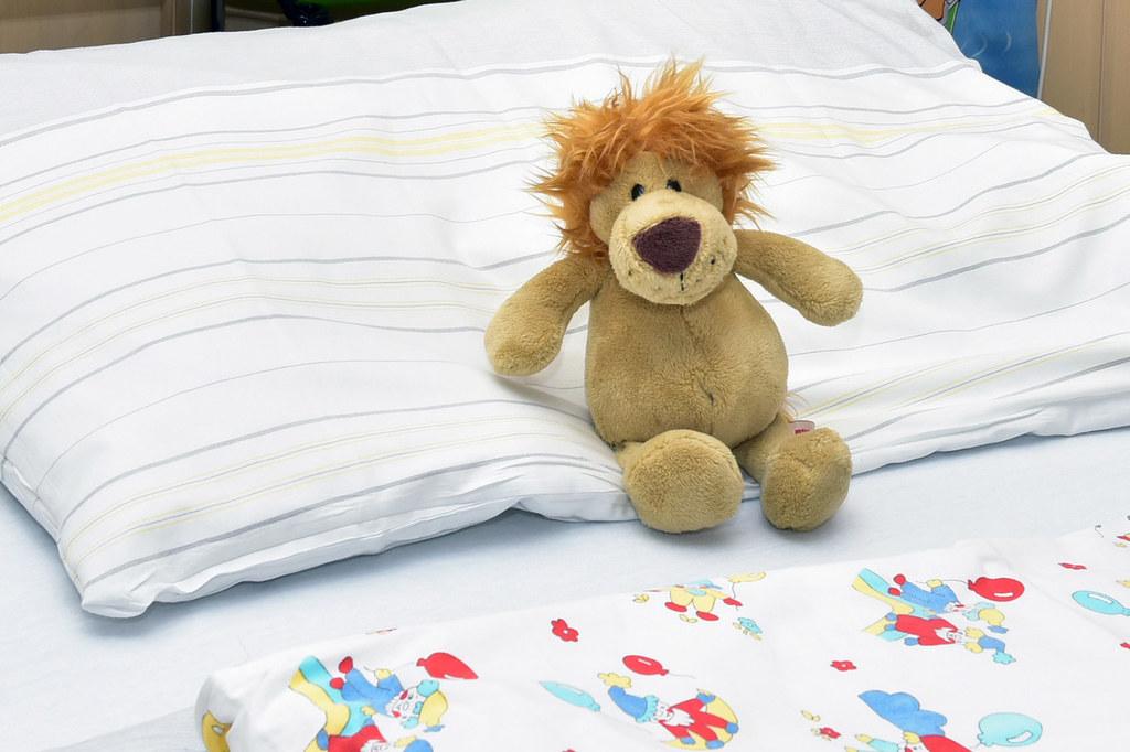 In Salzburg kamen im Vorjahr fast 5.500 Kinder zur Welt.