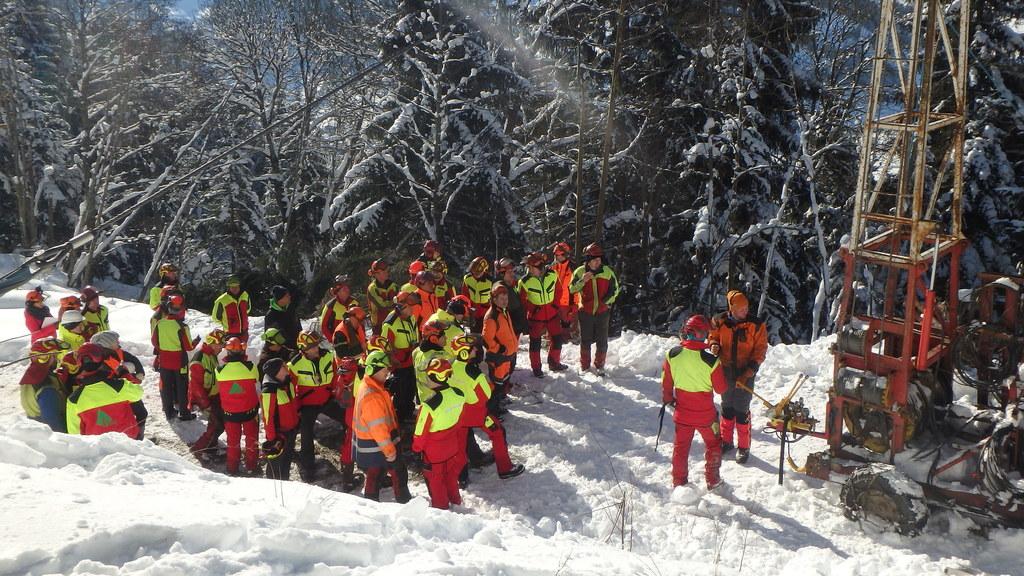 Mehr Sicherheit bei Waldarbeiten
