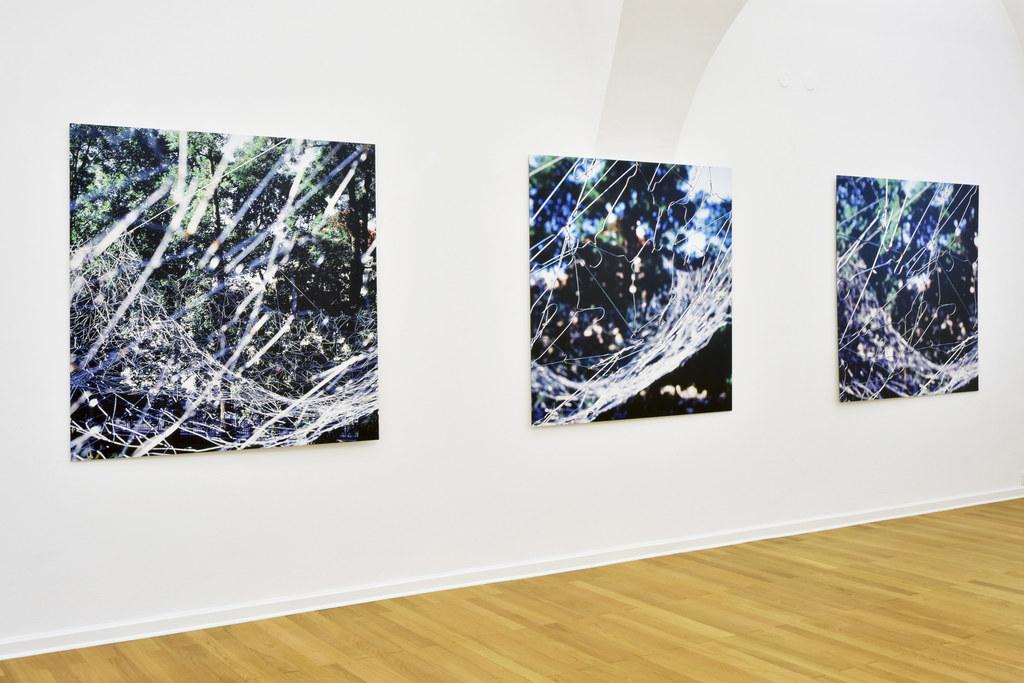Die aktuelle Ausstellung in der Galerie im Traklhaus zeigt einen interessanten E..