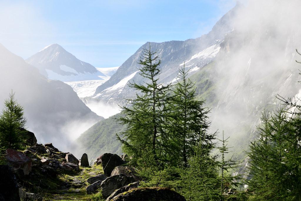 Für Kinder und Jugendliche werden heuer erstmals Wildnis-Camps im Nationalpark H..
