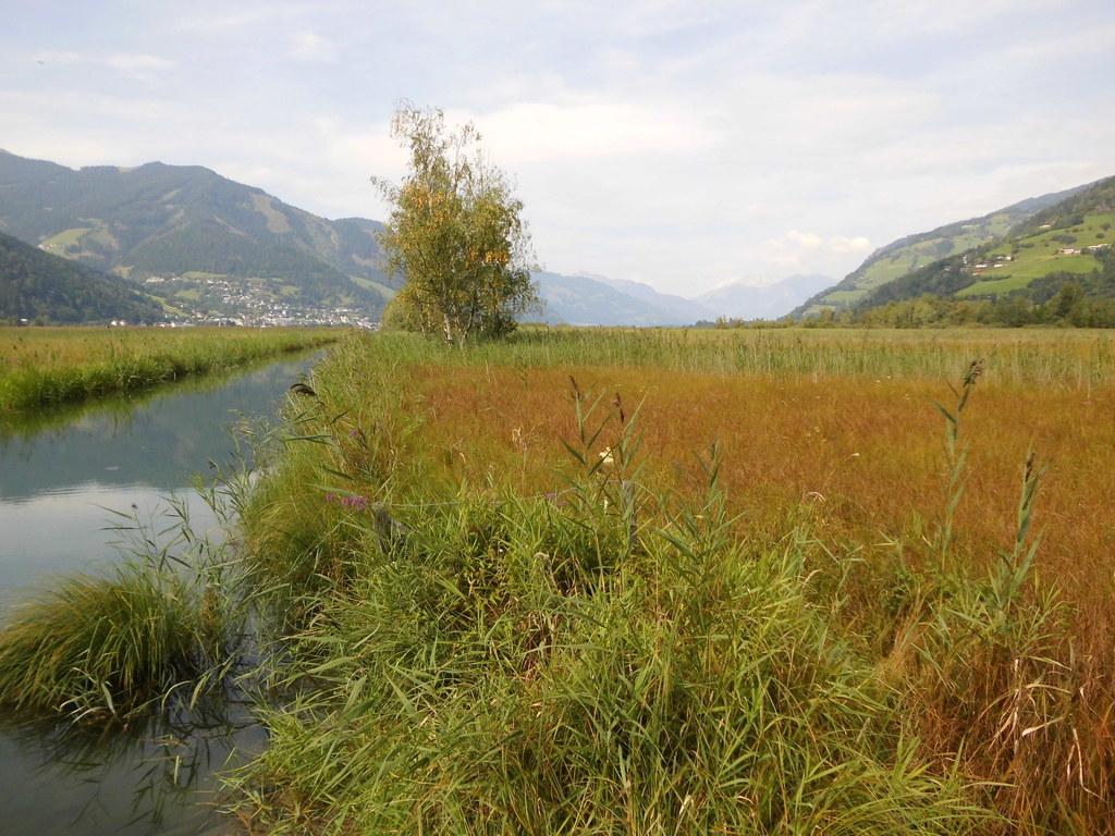 Auch das Südufer des Zeller Sees ist ein Europaschutzgebiet.