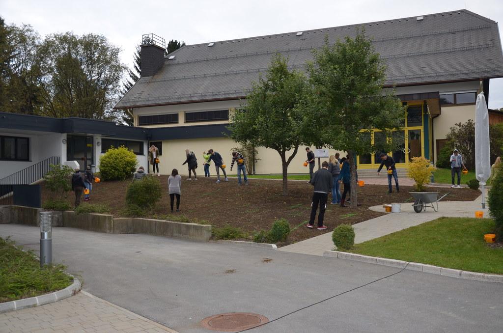 Neugestaltung der Grünflächen der LBS Tamsweg.