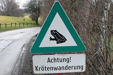 Im Land Salzburg gibt es fast 90 Amphibien-Wanderstrecken.