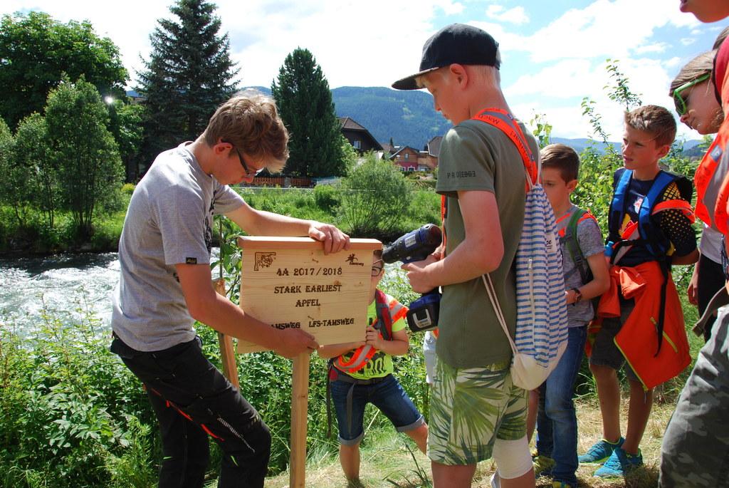 Die LFS Tamsweg und die Volksschule arbeiten zusammen, pflanzten die ersten zwei..