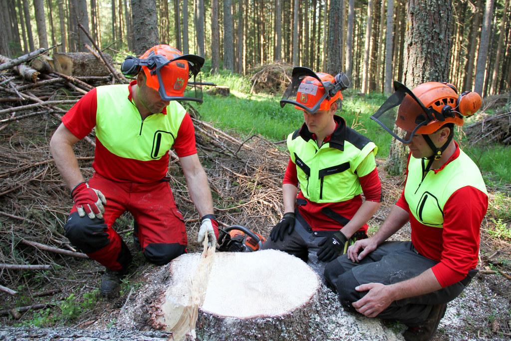 Die Prüfungen zum Forstfacharbeiter an der LFS Tamsweg sind abgeschlossen. 53 ha..