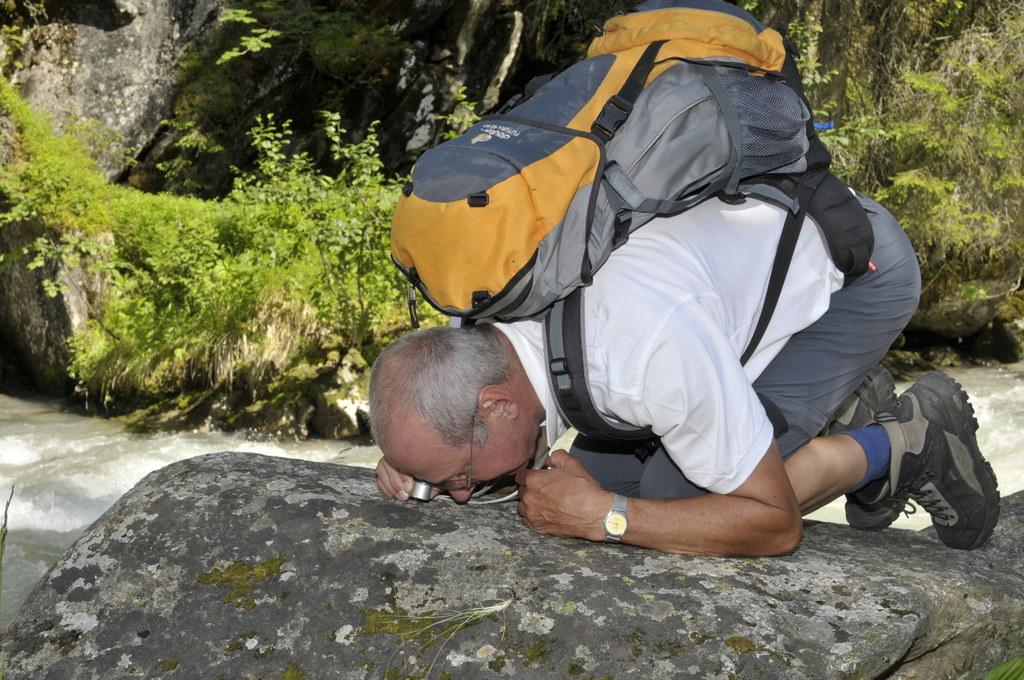 Die Forscher gehen im Nationalpark Hohe Tauern auf die Suche nach neuen Arten un..
