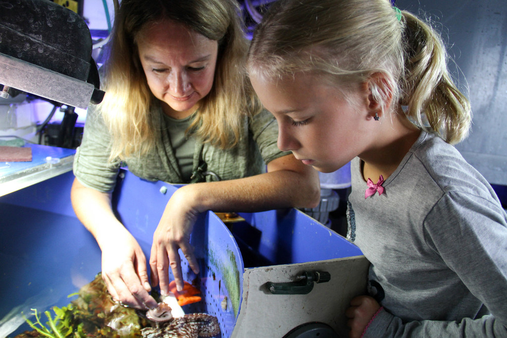 Kindertraum erfüllt! Julia Schaber (9) aus Bad Vigaun durfte nicht nur den Hai f..