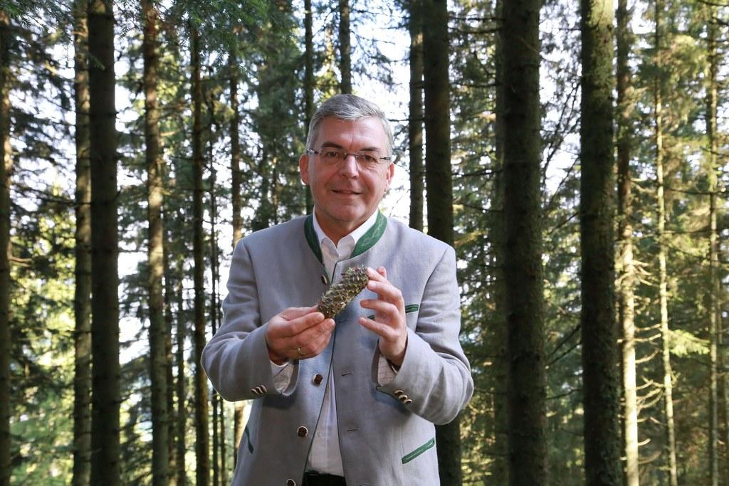LR Josef Schwaiger begrüßt das 350-Millionen-Euro-Paket für die Forstwirtschaft. In Salzburg werden damit wichtige Projekte fortgesetzt und neue auf den Weg gebracht.