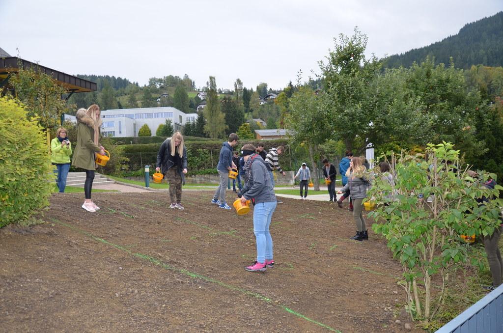 Landesberufsschule Tamsweg erstrahlt in bunter Blütenpracht. Die Idee wurde von ..