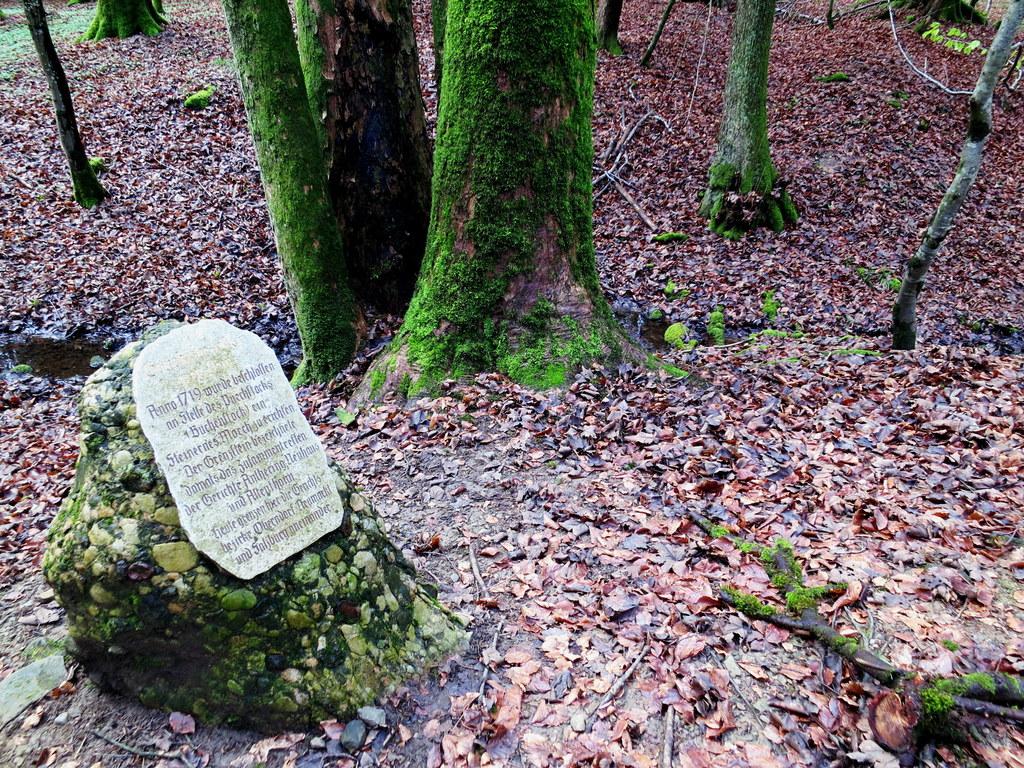 Im Ursprunger Moor treffen heute Elixhausen, Anthering und Seekirchen zusammen, ..