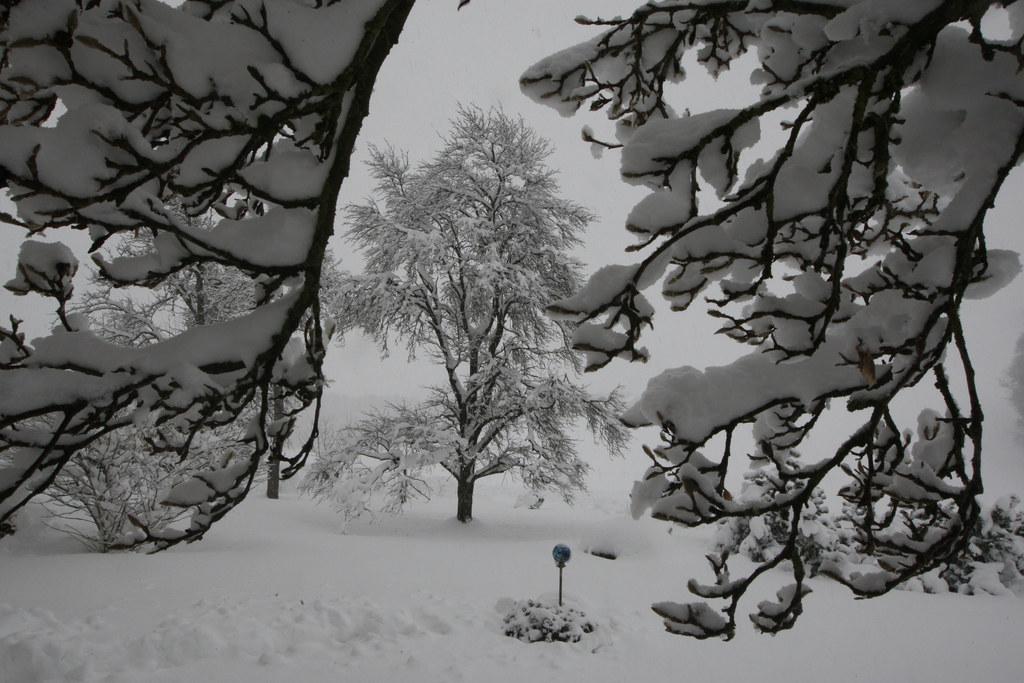 Die massiven Schneemengen sorgten für die Stromunterbrechung am Rengerberg (Symb..