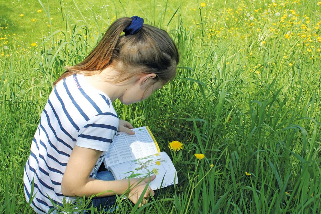 Schüler lernen mehr über den verantwortungsvollen Umgang mit der Umwelt - ein ko..