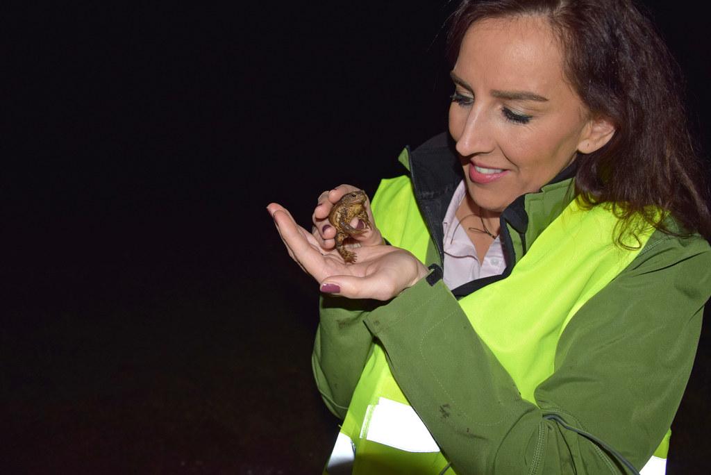 """LR Maria Hutter beim """"Froschklauben"""" in Bergheim. 31.000 Amphibien konnten im Vorjahr vor allem durch fleißige ehrenamtliche Helfer geschützt werden."""