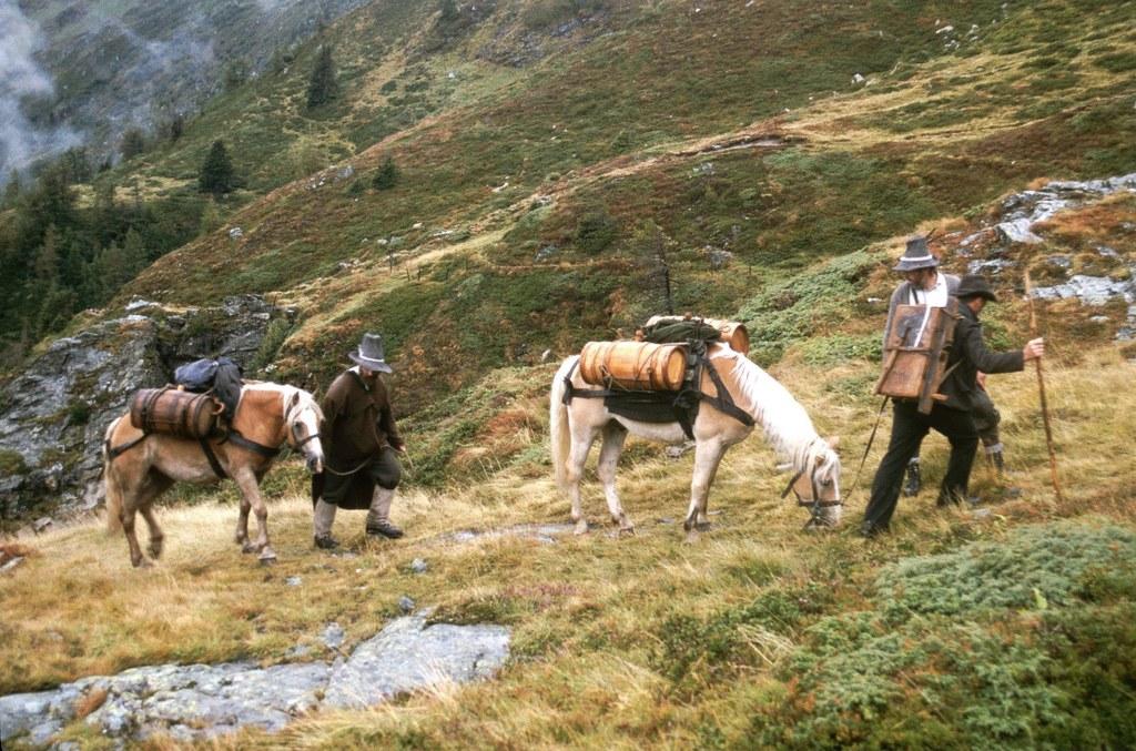 Die Säumerei mit Pferden war in den Alpen eine wichtige Erwerbsquelle für die Ba..