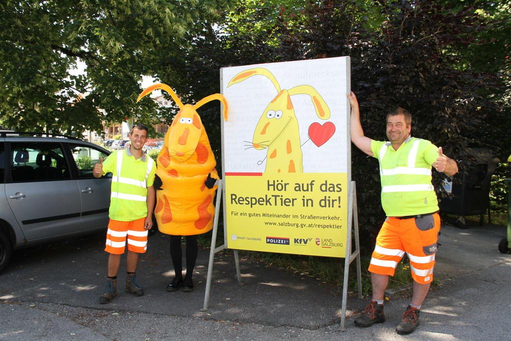 Josef Ebner und Robert Resch von der Straßenmeisterei Flachgau stellen mit ihren..