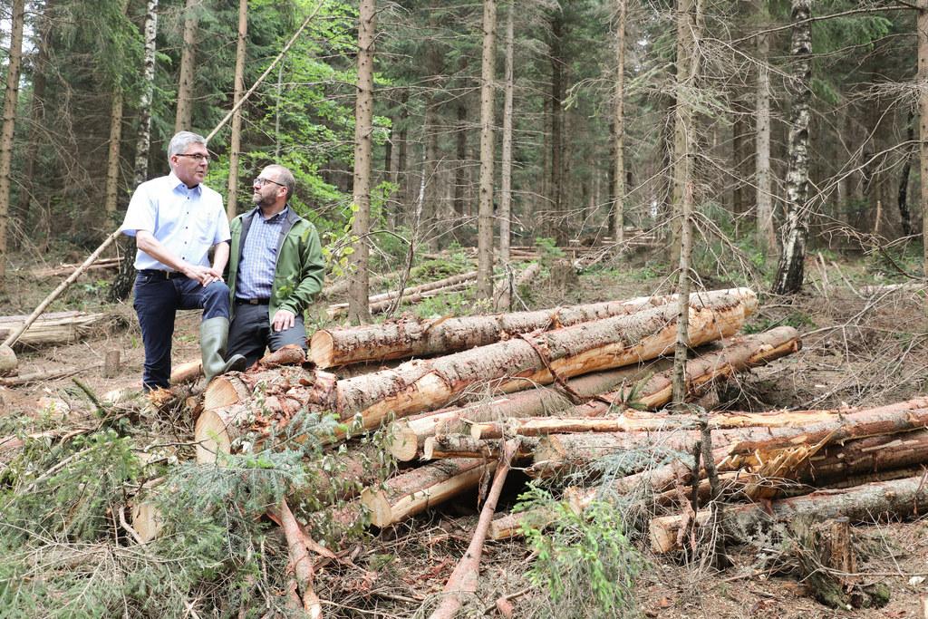 Der harte Winter hat viele Schäden im Wald hinterlassen, auch diese Fälle werden..