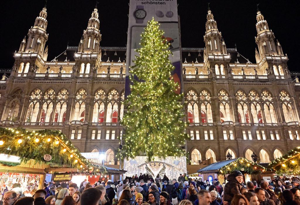 Rund 3,5 Millionen Gäste sehen den Salzburger Christbaum in Wien.
