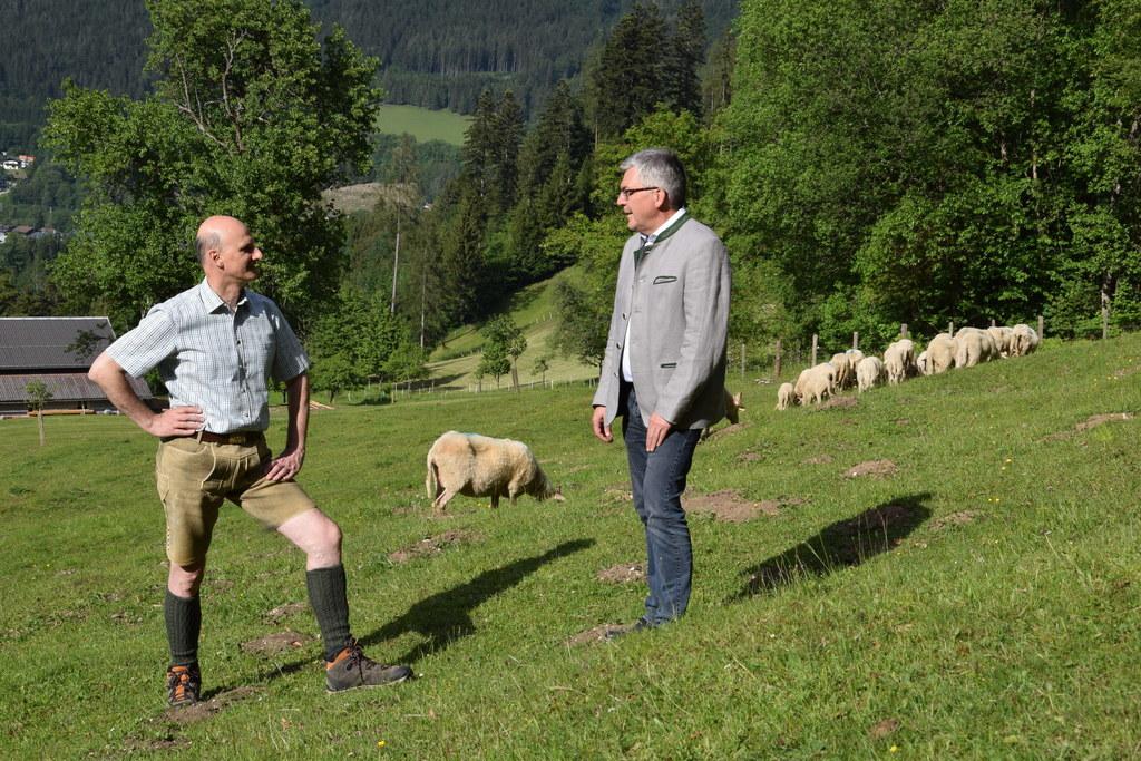 """Die Weidesaison beginnt und damit wird der Wolf wieder zum Thema. """"Wir unterstützten die Landwirte bestmöglich, um ihre Tiere zu schützen"""", betont LR Josef Schwaiger. Hier im Bild mit dem Wolfsbeauftragten des Landes, Hubert Stock (links)."""