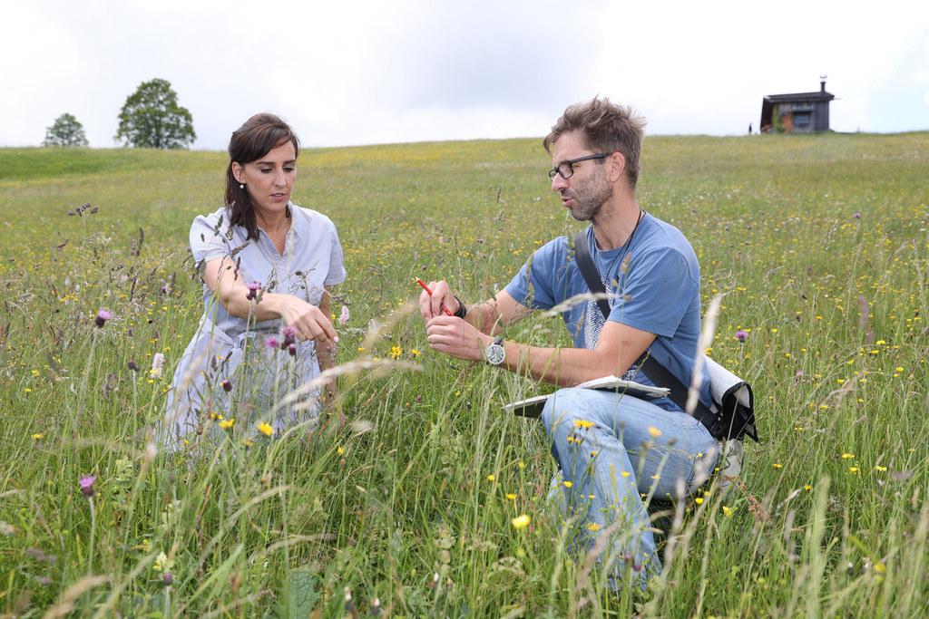 LR Maria Hutter gemeinsam mit dem Saatgutexperten Mark Ressel  in der bunten Blumenvielfalt der Unkener Bergmähder.