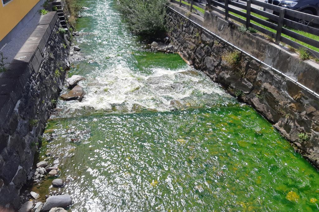 Das gelb-grüne Wasser gelangte über Kanäle und einen kleineren Bach bis in die Mur.