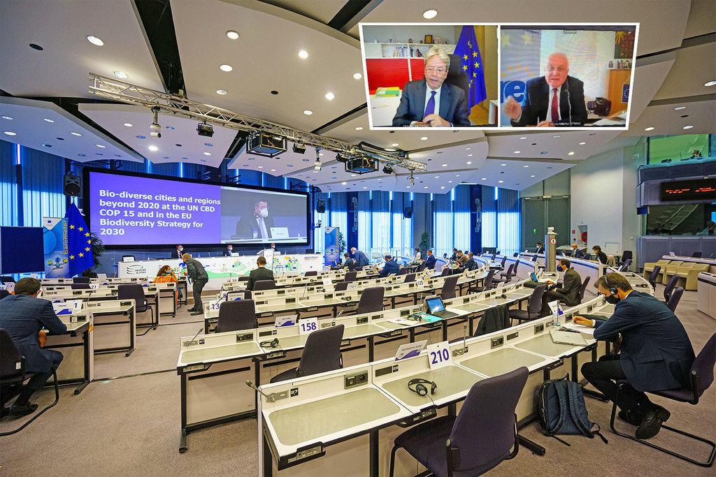 Coronabedingt fand die AdR-Plenartagung erneut im Video-Format statt. EU-Kommissar Paolo Gentiloni und Franz Schausberger (kl. Bild) waren online zugeschaltet.