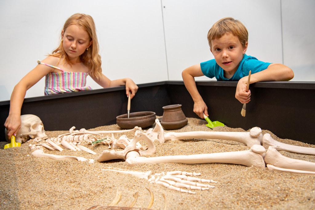 Selber Ausgräber werden im Keltenmuseum Hallein.