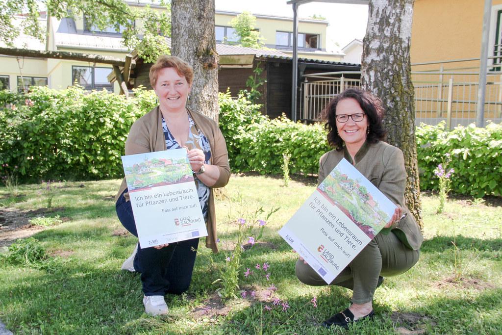 Auch in Lamprechsthausen blüht und gedeiht es: LR Daniela Gutschi und Bgm. Andrea Pabinger besichtigten zwei der insgesamt zehn Flächen, die nun naturnah gestaltet werden.
