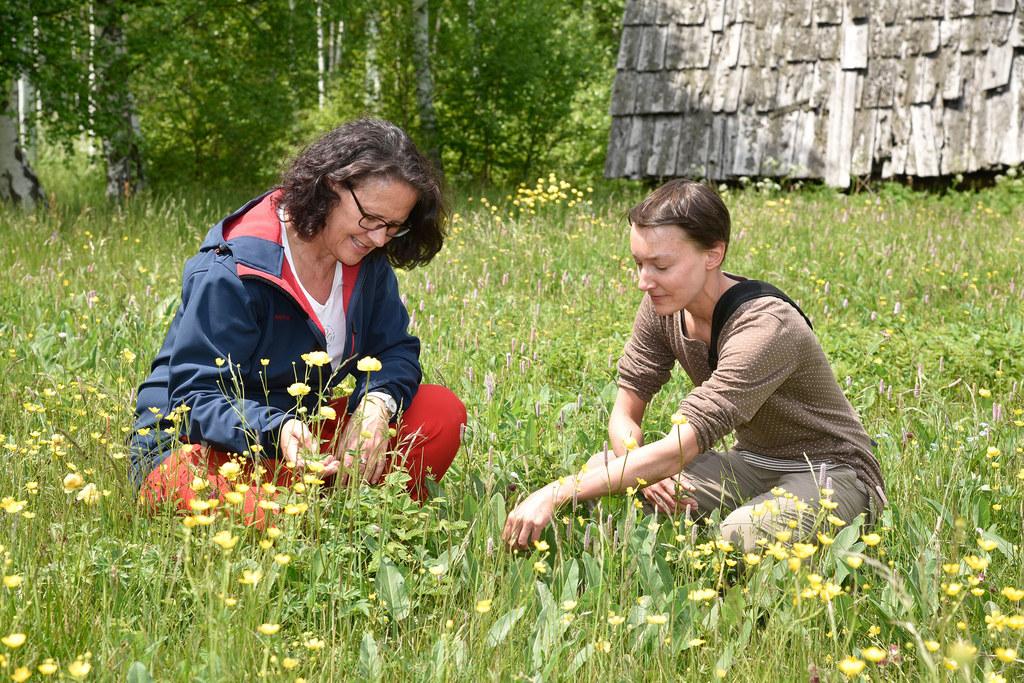 Feuchte Wiesen, wie hier von LR Daniela Gutschi und Clara Leutgeb, Schutzgebietsbetreuerin für den Lungau, verbessern die Habitate des Blauschillernden Feuerfalters.