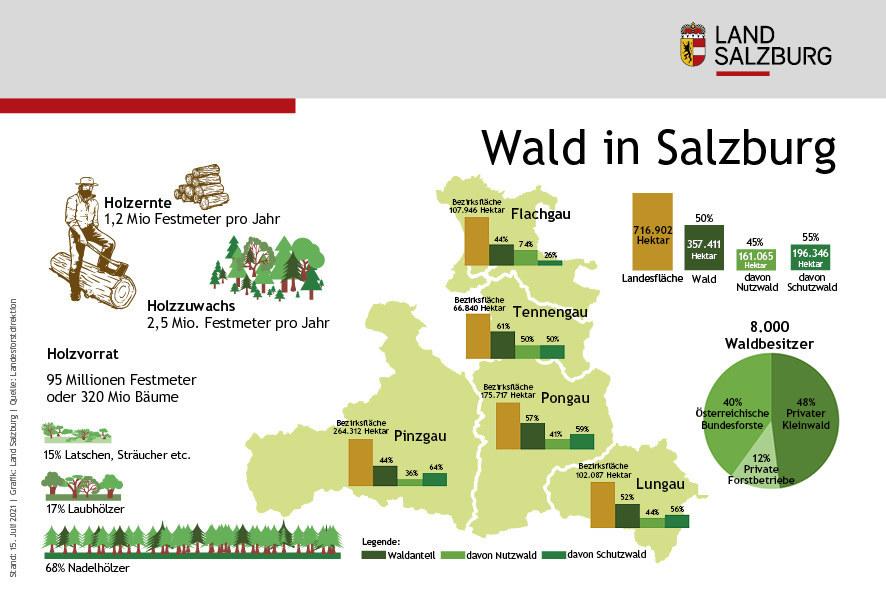 Wald in Salzburg Stand 15.7.2021
