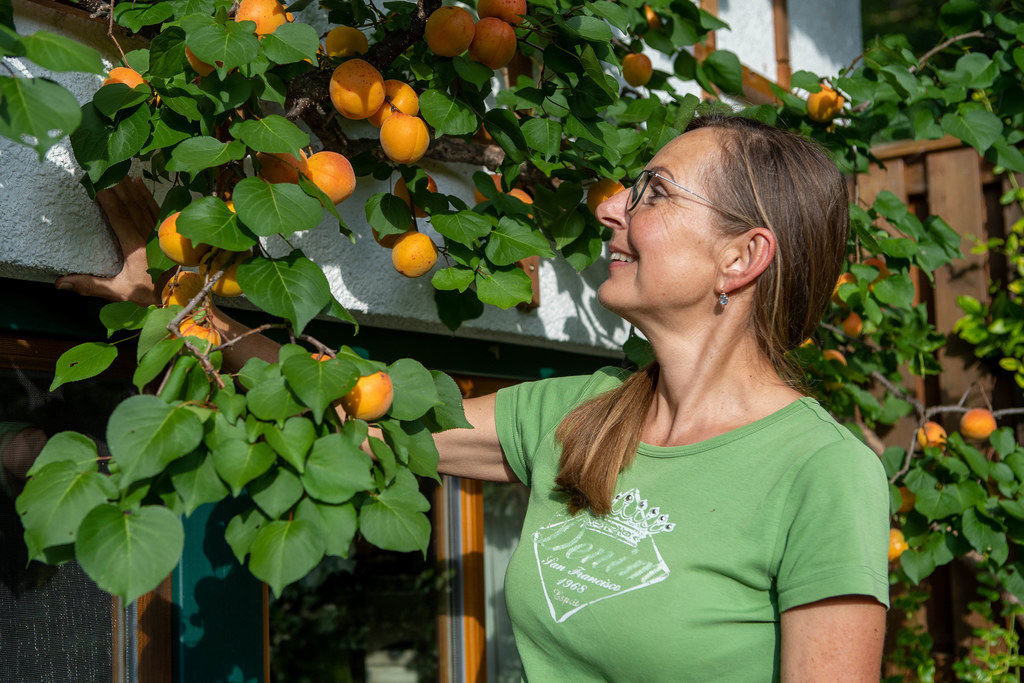 Heimisches Obst darf im naturnahen Garten natürlich auch nicht fehlen.